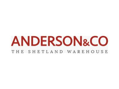 Anderson & Co case study